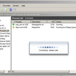 Problem starting SAP server - SAP console while logging into system via SAP GUI
