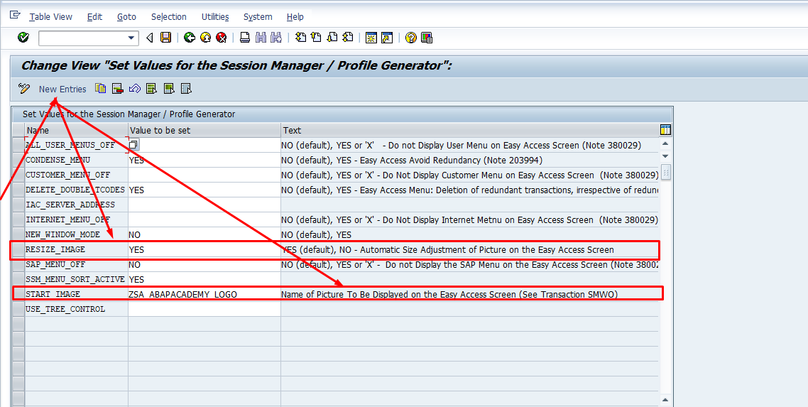 How to Change SAP Easy Access Screen Picture